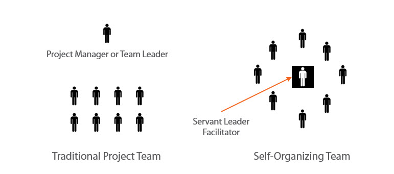 What is a Self-organizing Team