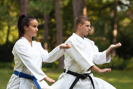 Agile Maturity and the Martial Arts